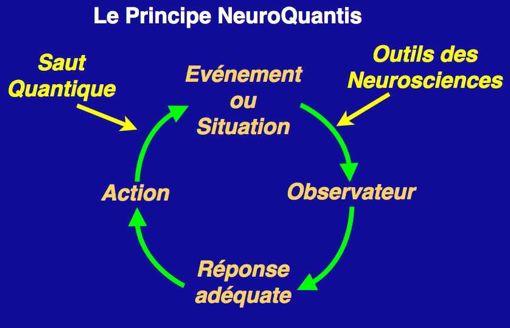 principe neuroquantis
